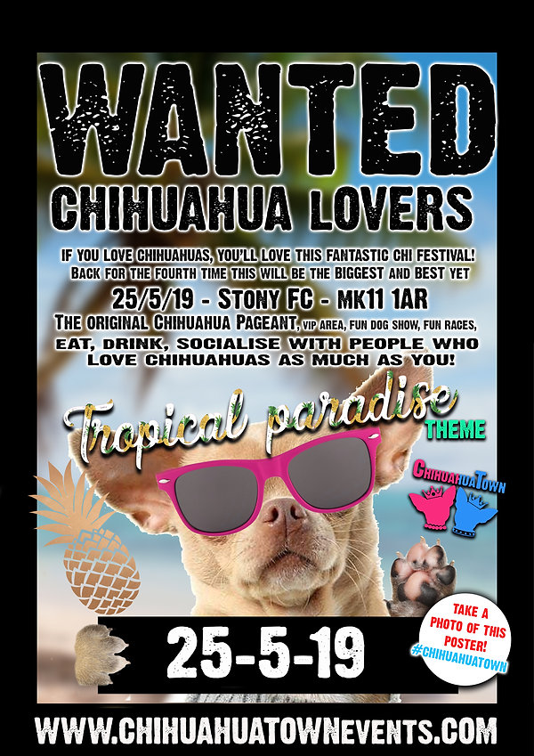 chihuahua wanted.jpg