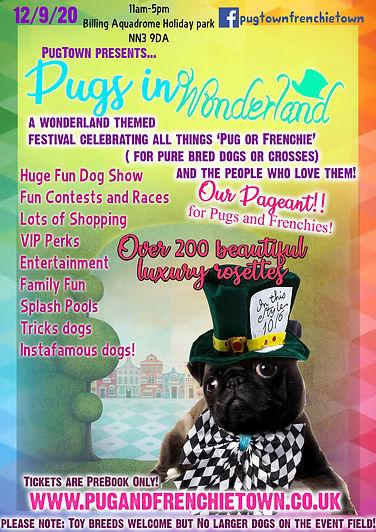 pug wonderland flyer layered.jpg