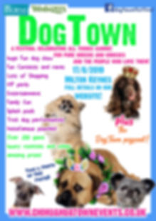 dogtown list flyer.jpg