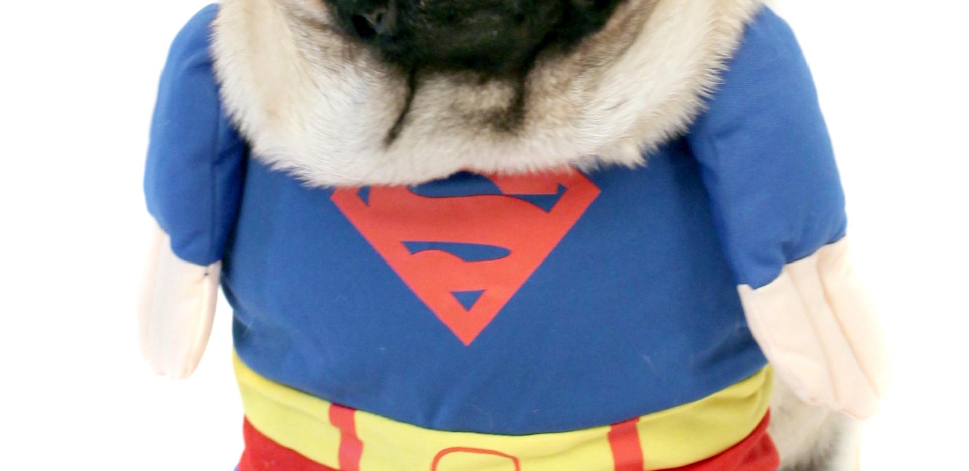 Super Doug .jpg