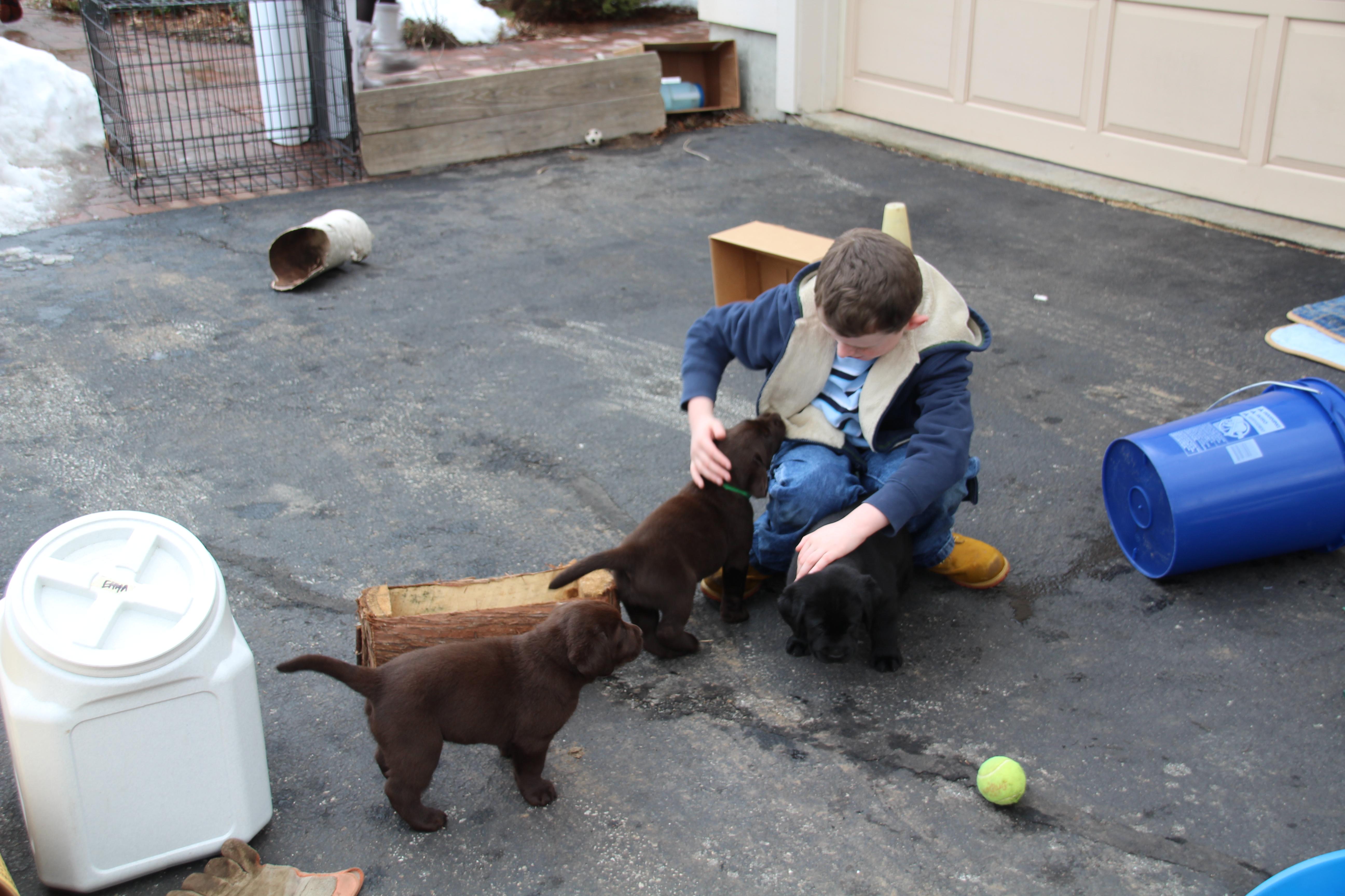 PuppiesFeb20Weekend 114
