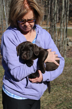 PuppiesMar6 012