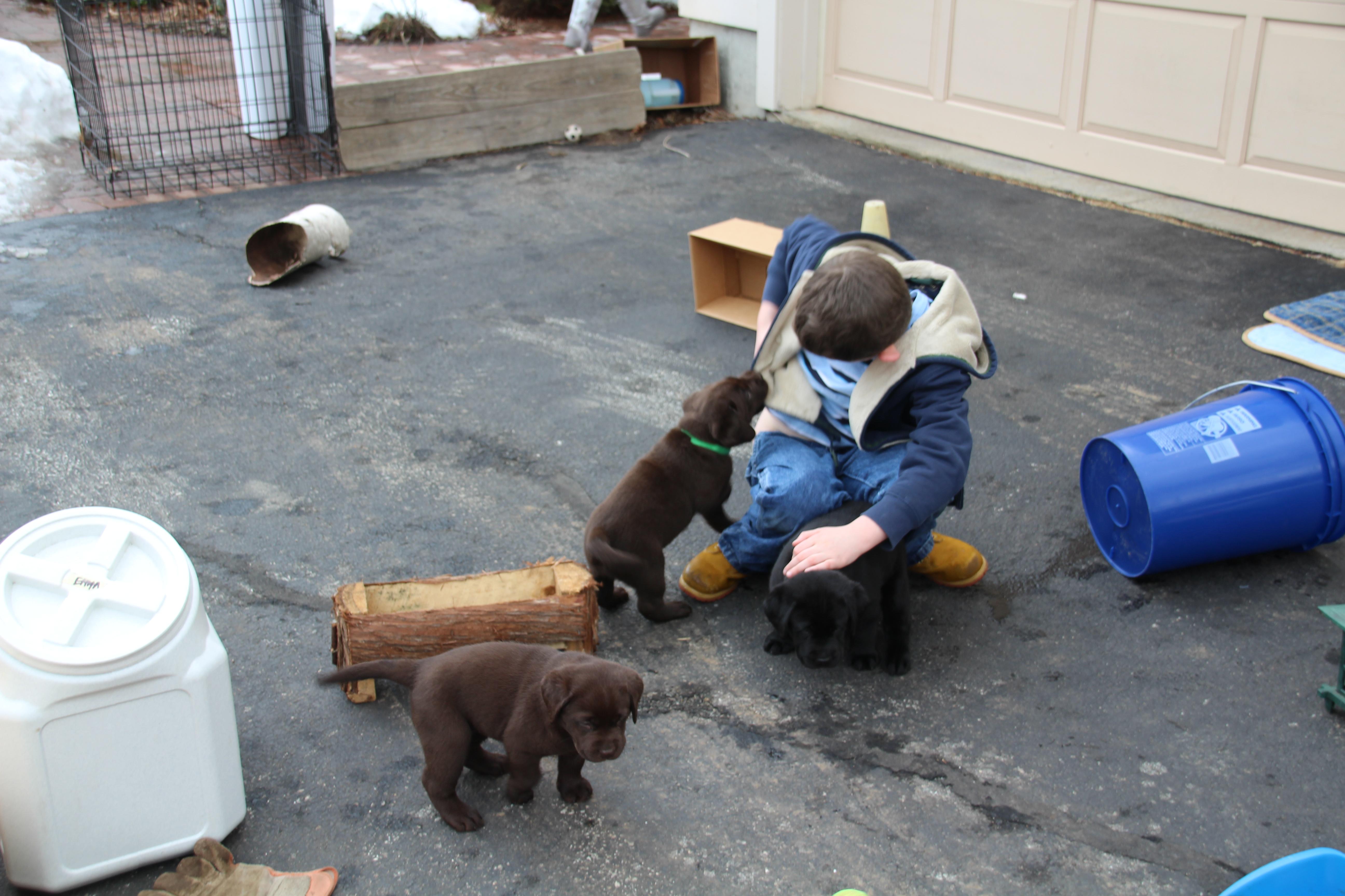 PuppiesFeb20Weekend 115