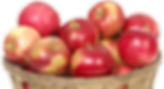 Country Store Apples | Oklahoma Academy