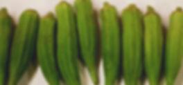 Asparagus 7.jpg