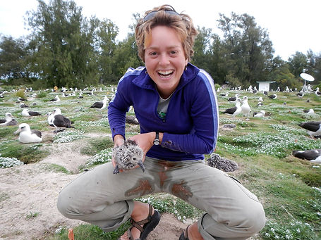 Sometimes field work gets messy... Wieteke working with a Laysan Albatross chick on Midway Atoll NWR. Photo credit: Greg Joder