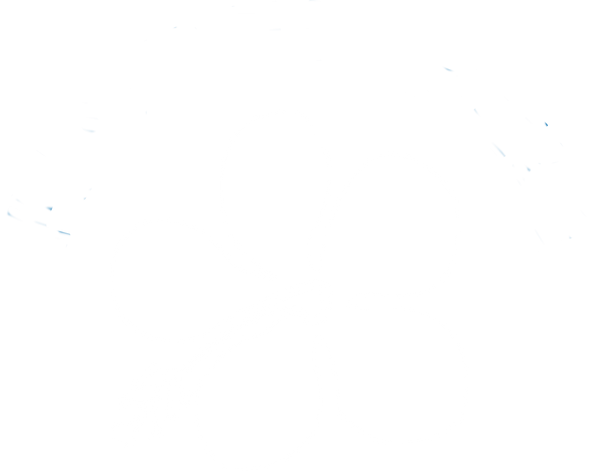 Logo tracciati 1.png