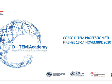 Lectures at the Italian Trade Agency's Digital Temporary Export Manager Courses