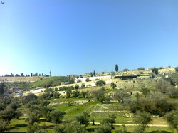 Blick vom Skopusberg Jerusalem