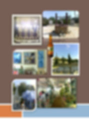 RiRi Rundum Israel Richtig Informiert Israel Jerusalem Info Service, Insidertipps Israel Jerusalem. Hebräische Wurzeln Rückkehr 10 Stämme Volontäre - Volunteers Israel Jerusalem