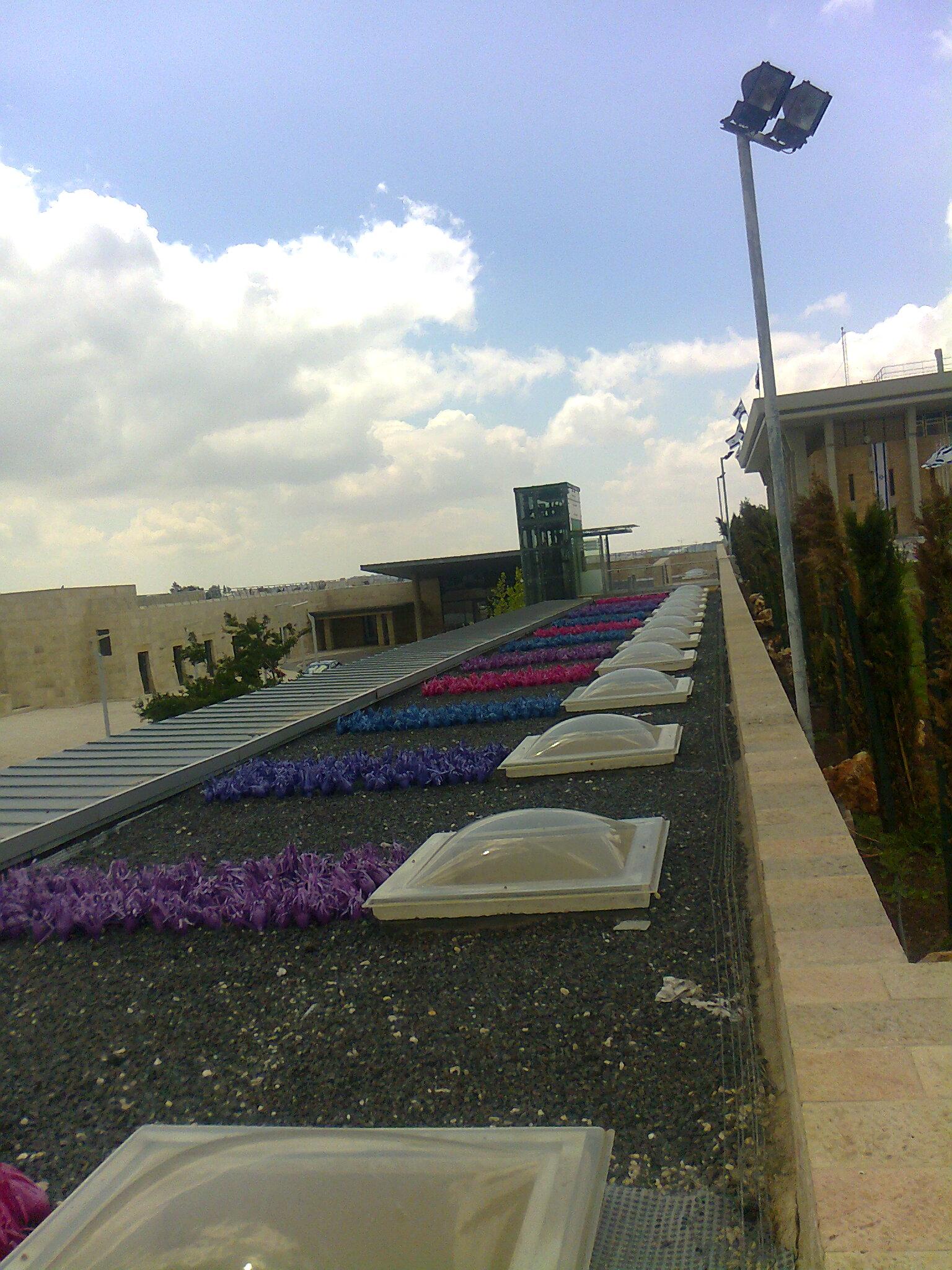 Knesset Dachbepflanzung