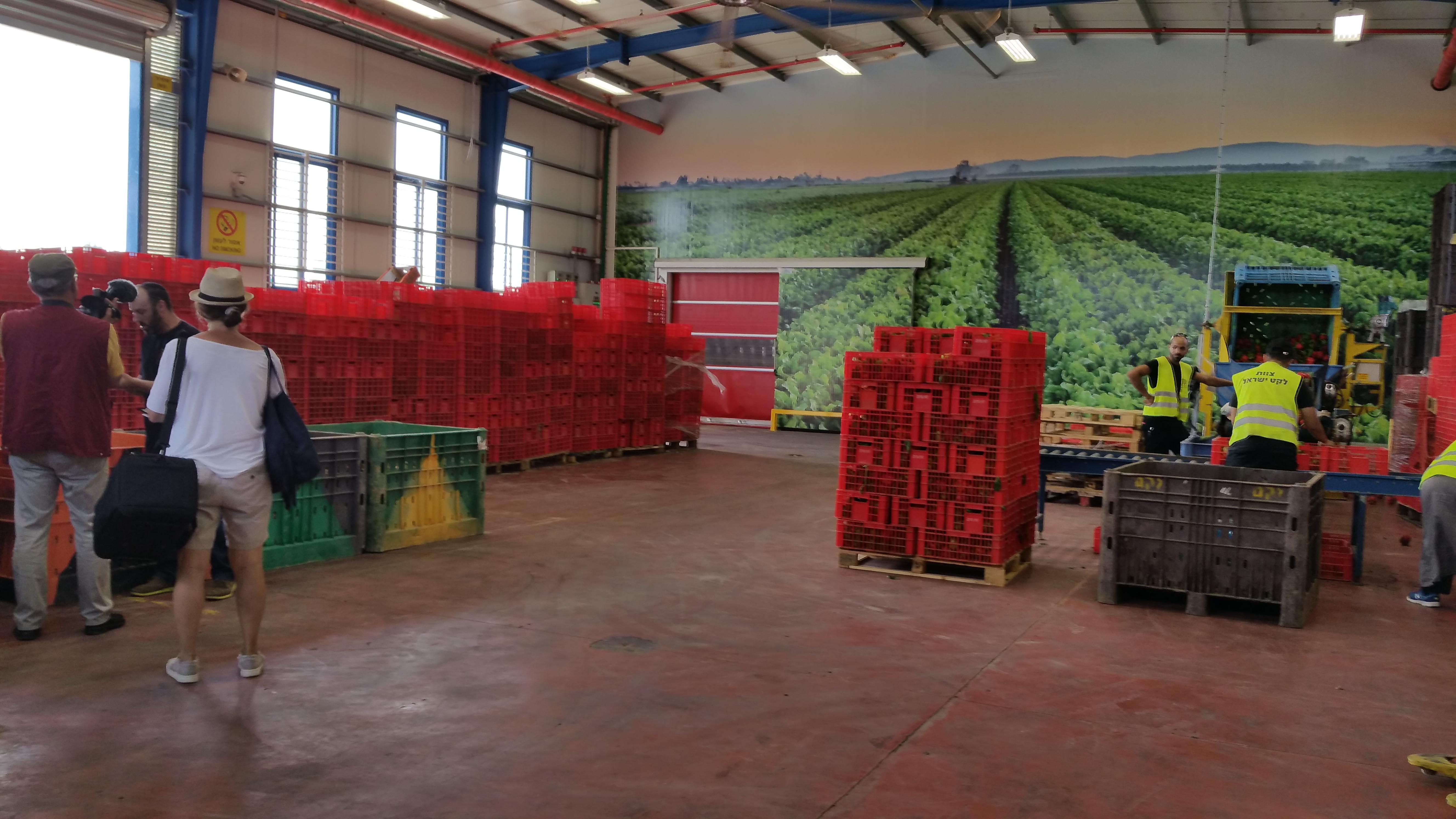 Leket Israel Logistikzentrum