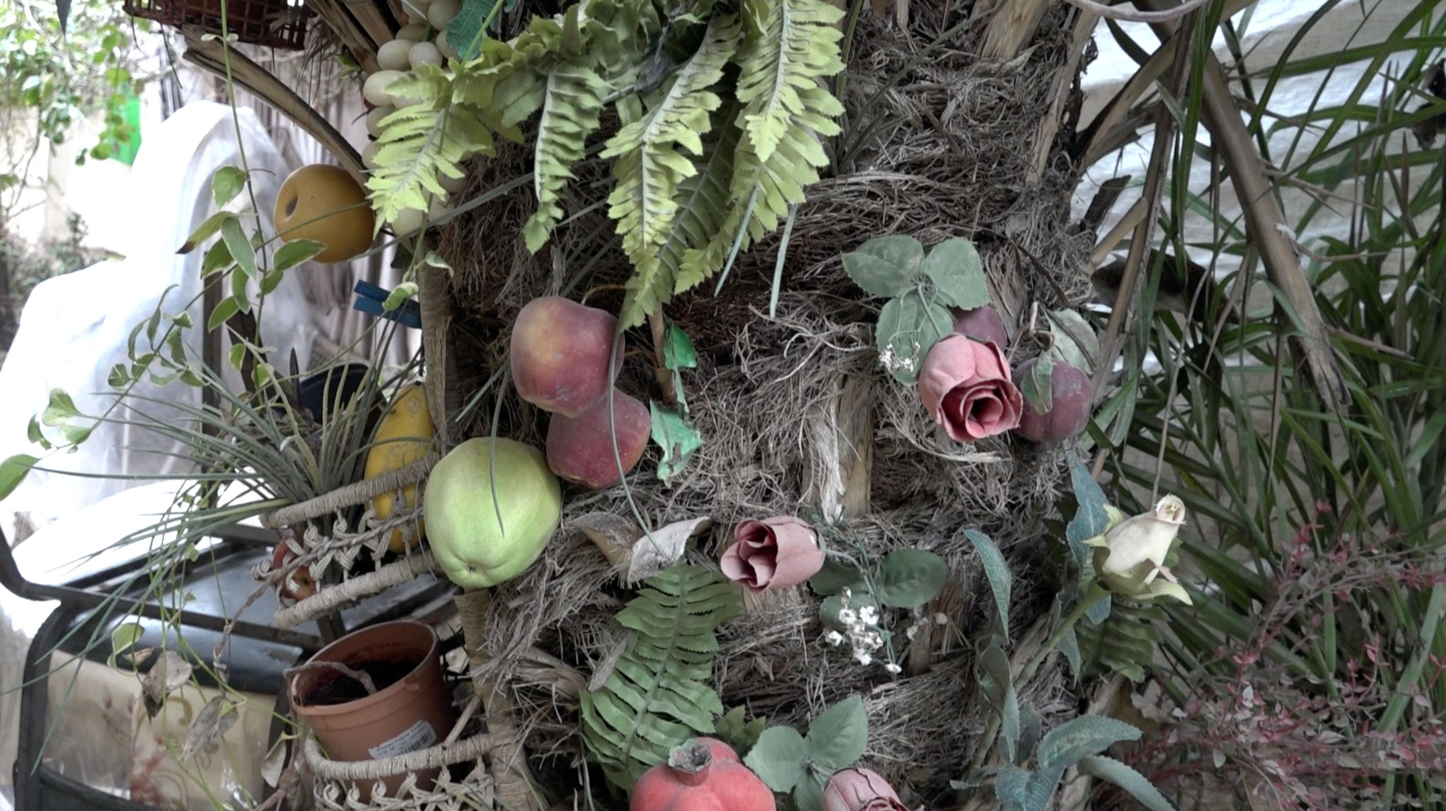 Der Garten des Rabbis