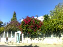 Jerusalem HaNeviim Street