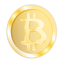 BitCoin Bit Coin crytocurrency accepted