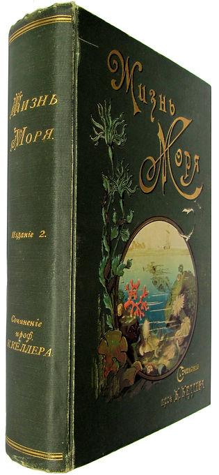 К.Келлер. Жизнь моря. 1905 г.