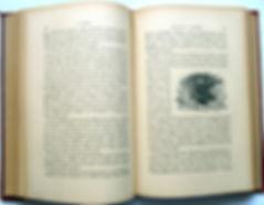 Генэн Ю. Россия. История, география, литература. 1906 г.