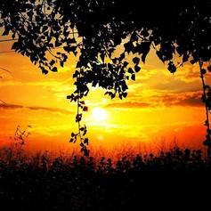 Sunrise sunrise☀️😎💛 #picoftheday #inst
