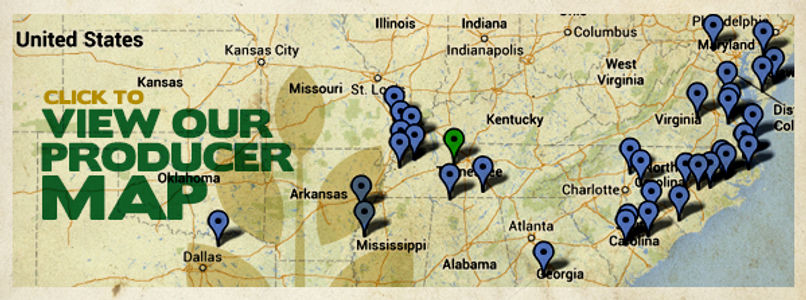 map_page_header (1).jpg