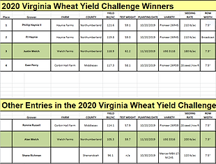 2020 VA Yield Contest.PNG
