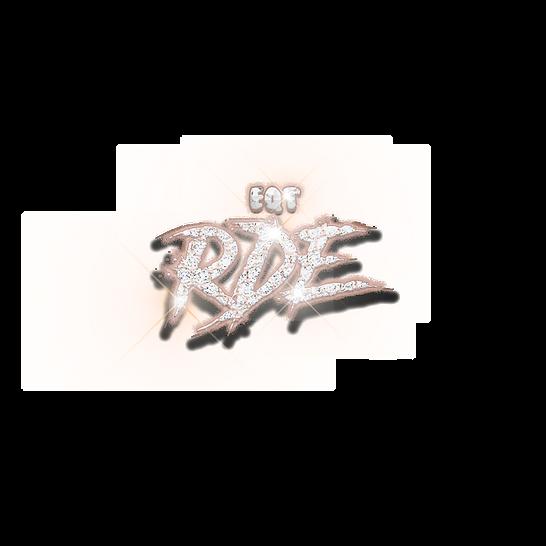 RDE copy.png