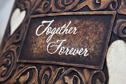 close up Together Forever2.jpg