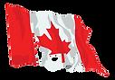 canada-flag-waving_edited.png