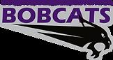 Bobcats logo.png