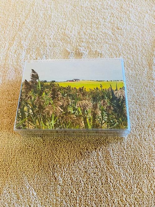 Tall Grass/Red Barn Card Deck