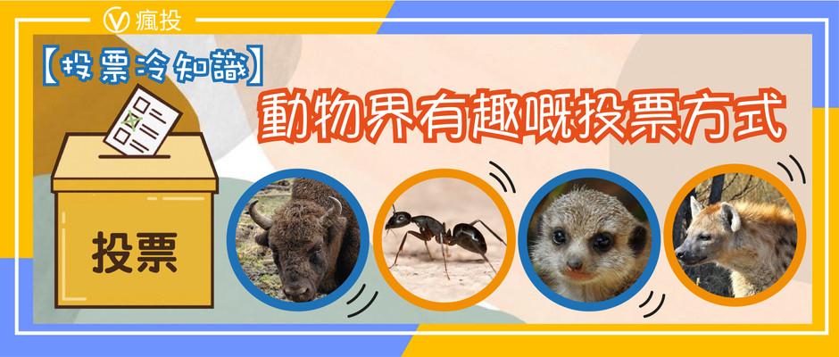【投票冷知識】動物界有趣嘅投票方式,連螞蟻都識投票?