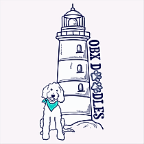 OBX Lighthouse Logo SQUARE HIGH RES_2.pn