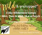 Wild & Unplugged Day Camps.png