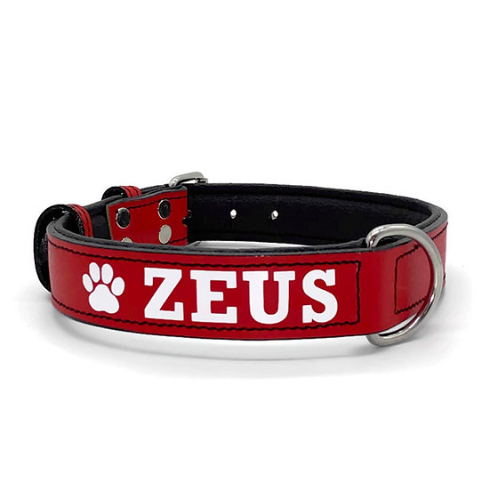 Matte Red Personalized Padded Leather Dog Collar