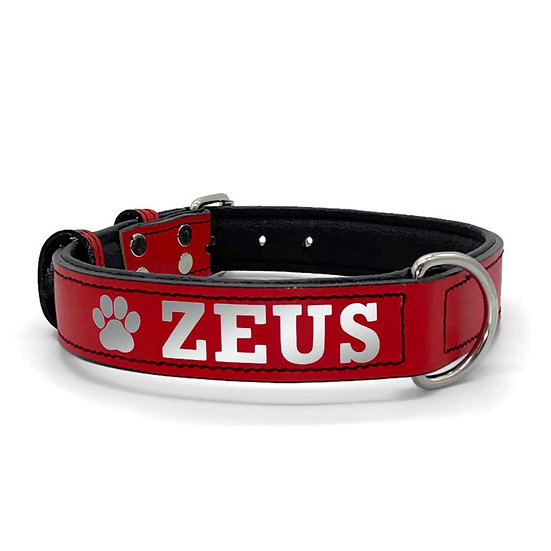 Reflective Red Personalized Padded Leather Dog Collar