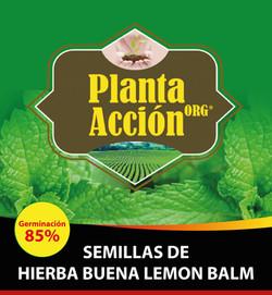 SEMILLAS DE HIERBA BUENA LEMON BALM