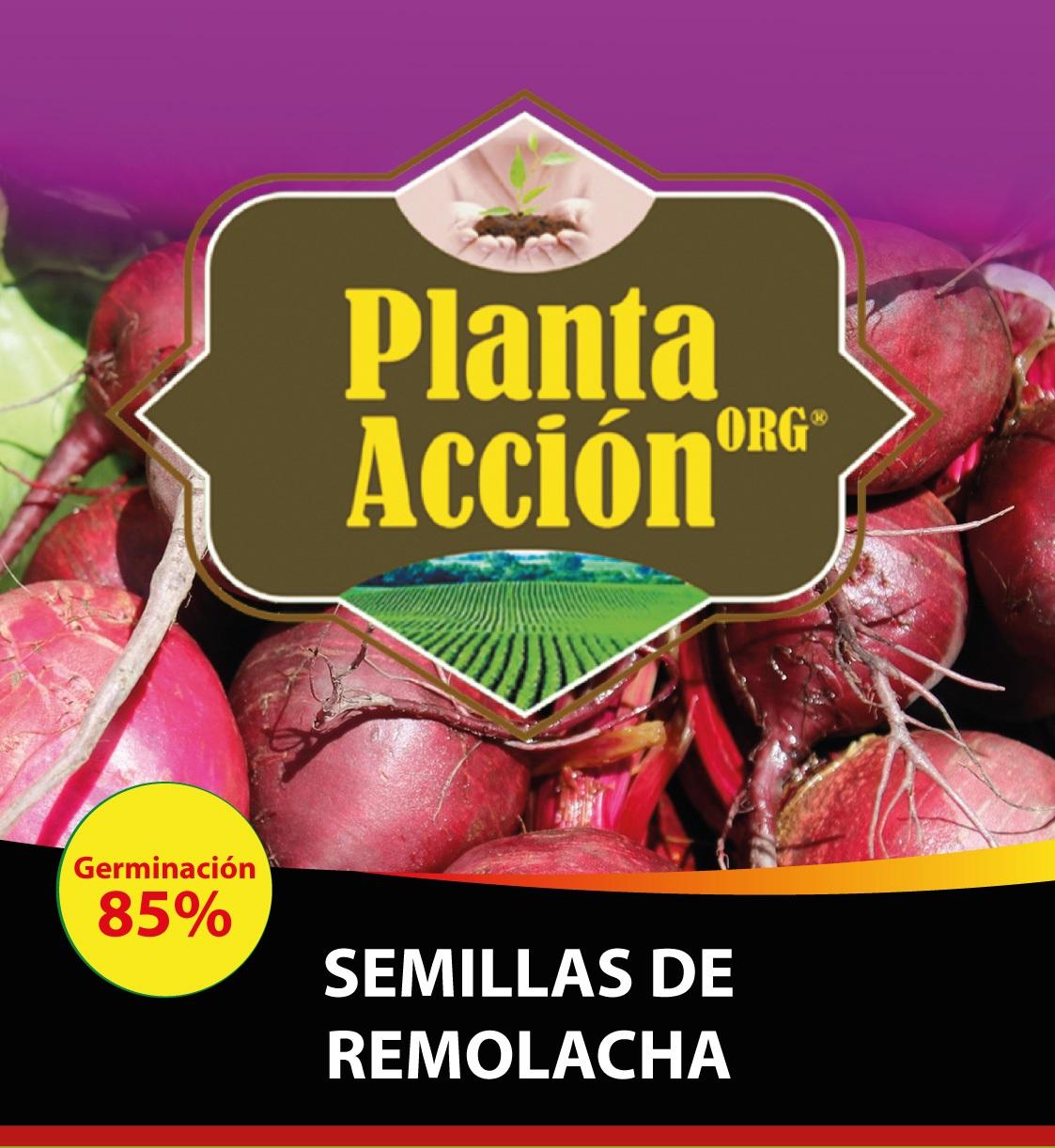 SEMILLAS DE REMOLACHA