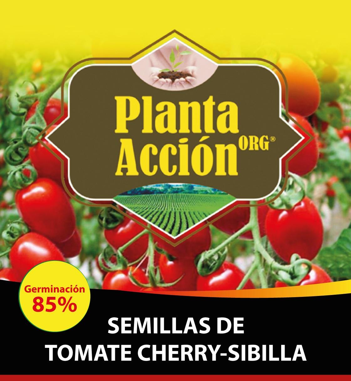 SEMILLAS DE TOMATE CHERRY-SIBILLA