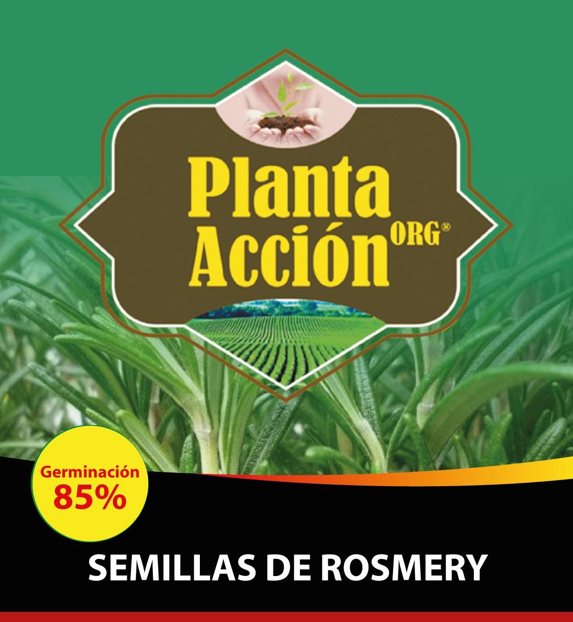 SEMILLAS DE ROSMERY