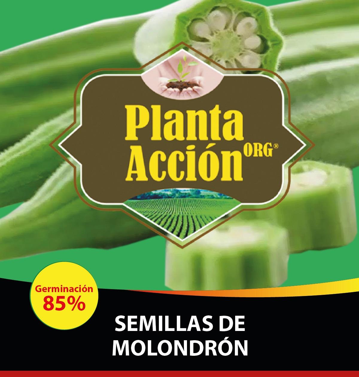SEMILLAS DE MOLONDRON
