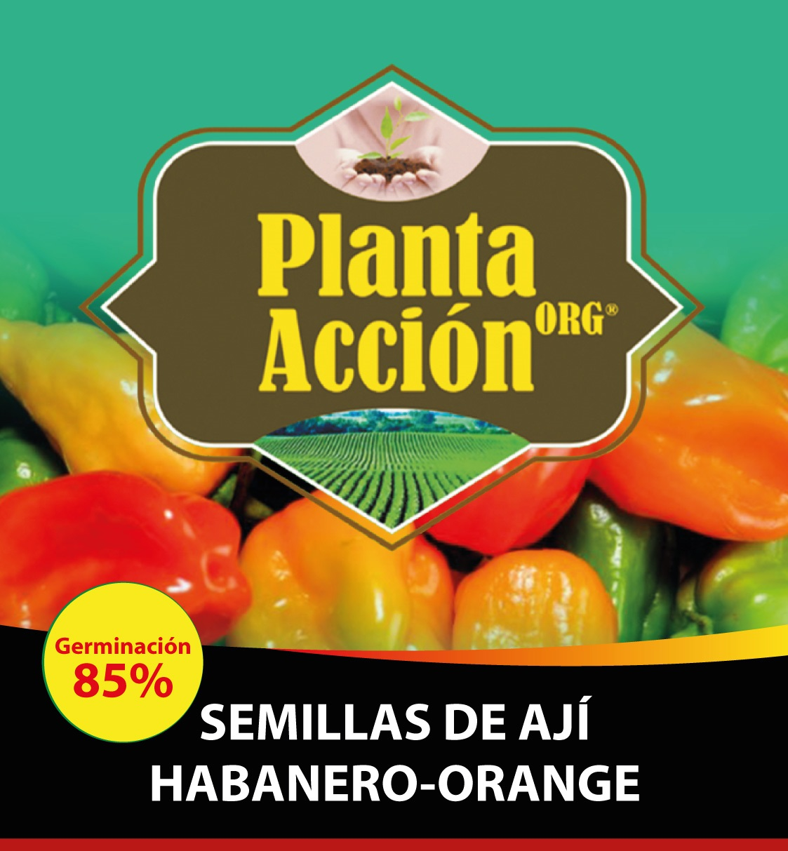 SEMILLAS DE HABANERO-ORANGE