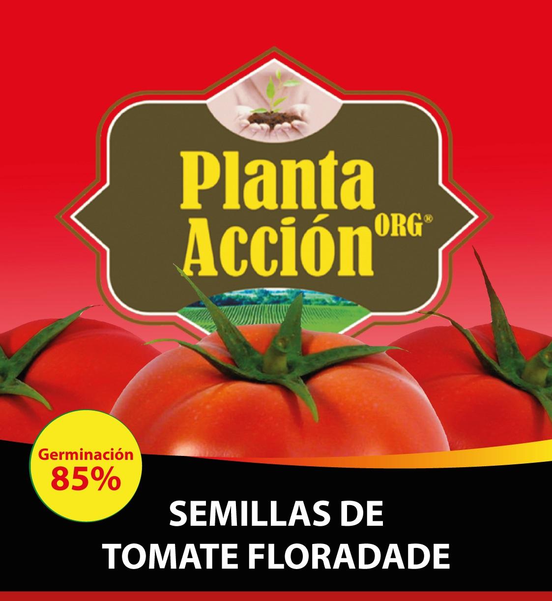 SEMILLAS DE TOMATE FLORADADE