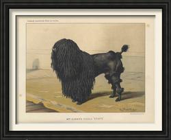 Dogs vintage framed prints