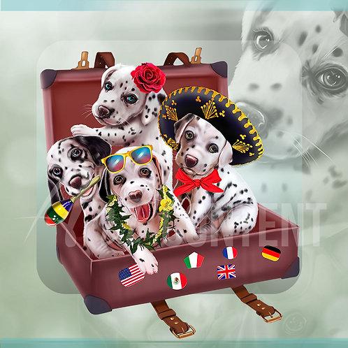 Dalmatians Travelers