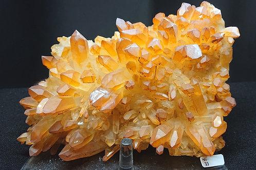 Golden Healer Cluster Crystal No. 33