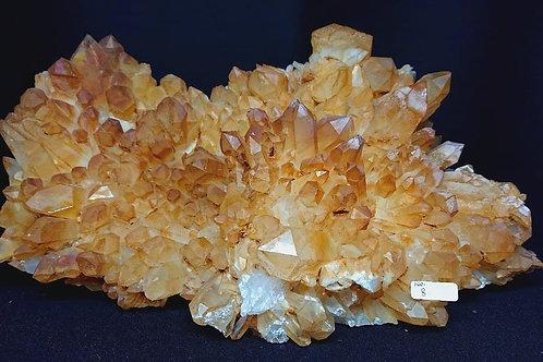 Golden Healer Cluster Crystal No. 8