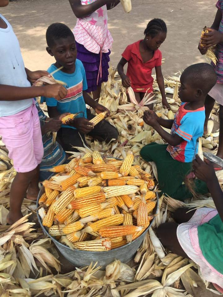 Lakay Timoun: Children shucking corn