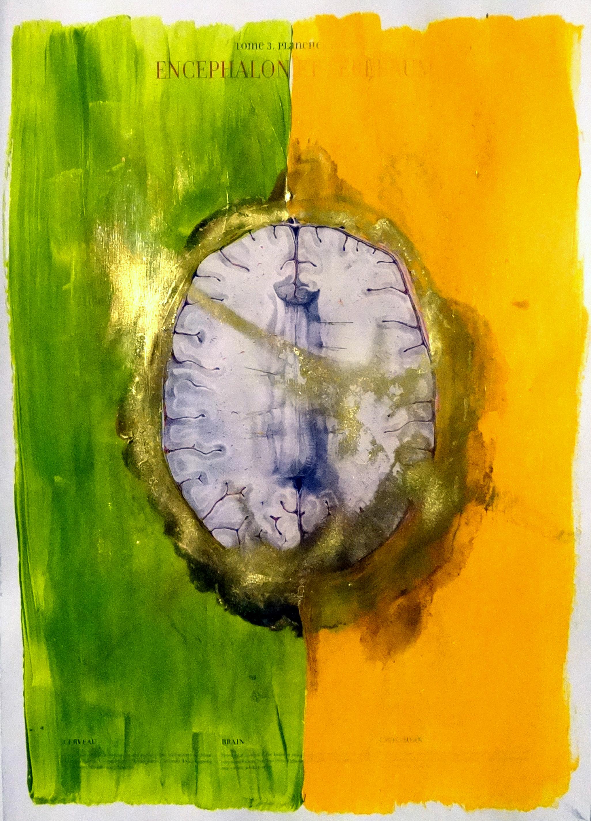 Brain Smear