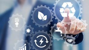 PRODUTOS LOCAIS: o avanço das estratégias que afetam o lucro, o planeta e as pessoas