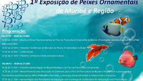 1ª Exposição de Peixes Ornamentais - De 07 à 08 de Dezembro - Participe!