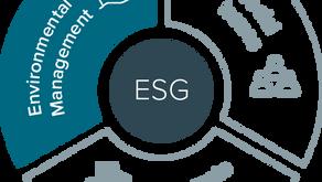 Sete passos para implementar um programa ESG em supermercados
